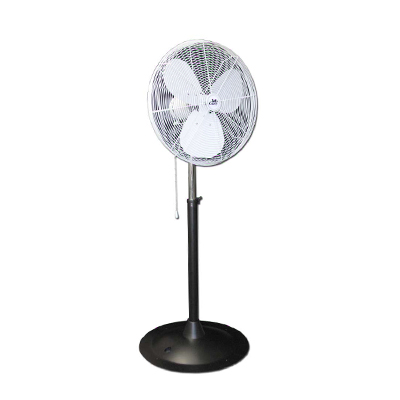 "Pedestal Fan, 16""    www.Raphaels.com - Call to place your rental order today! 858-689-7368 - www.raphaels.com"